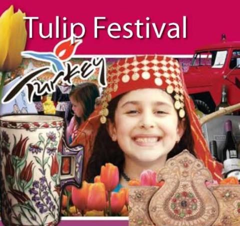 tulip-fest-2005-01.jpg