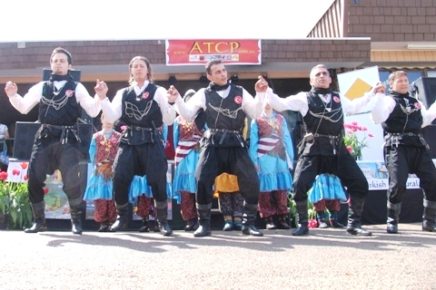 Tulip Festival 2006
